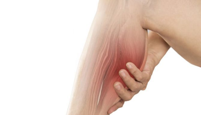 Svalová horečka – svalovice – opožděná svalová citlivost