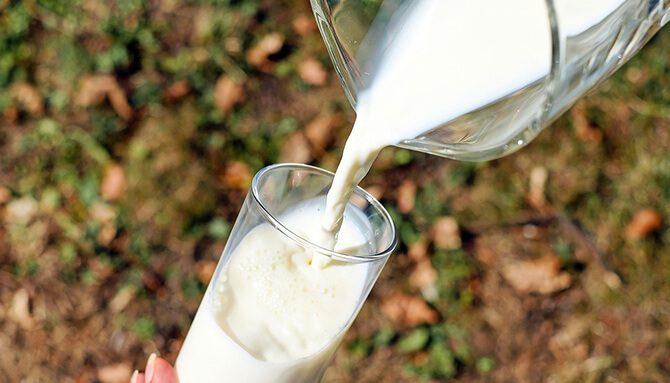 Mléko a mléčné výrobky – pít či nepít?