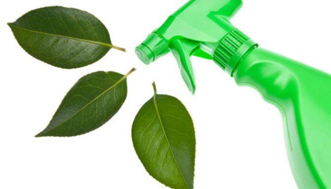 Ekologický úklid domácnosti – Jak na to?